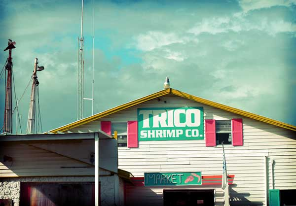 Trico Shrimp Company Ft Myers Beach