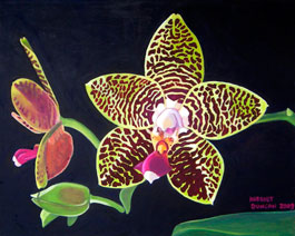 Phalaenopsis Orchid  Painting